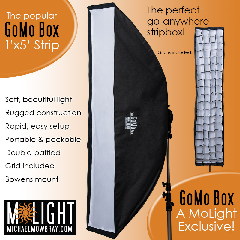 GoMo Box 1'x5' Stripbox