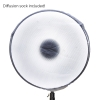 "22"" Beauty Dish"