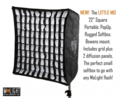"GoMo Box LITTLE MO 22"" Square Softbox"